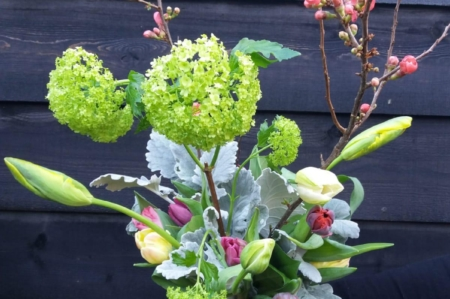 Tulpen tulpenboeket He-as Binnema Friesland Heerenveen Sneek bloemen boeket voorjaar in je bol